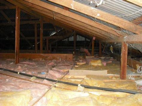 Ceiling Insulation Perth by Is There Insulation Willeton Building Inspection Perth