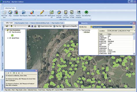 tree mapping software free esri arcwatch september 2011 gis based tree inventory
