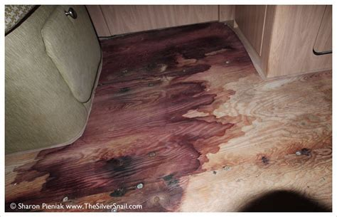The Silver Snail :: FLOOR ROT IN 2007 AIRSTREAM