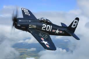 f9f tiger cat submited images