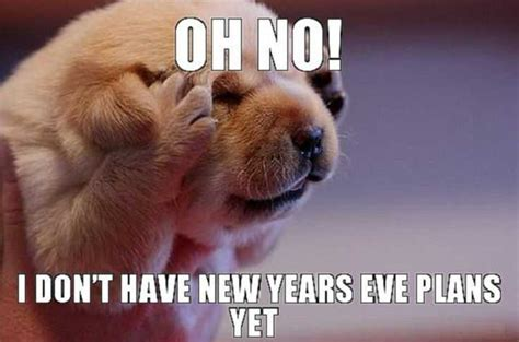 New Dog Meme - 20 funniest 2018 happy new year memes instrumentalfx