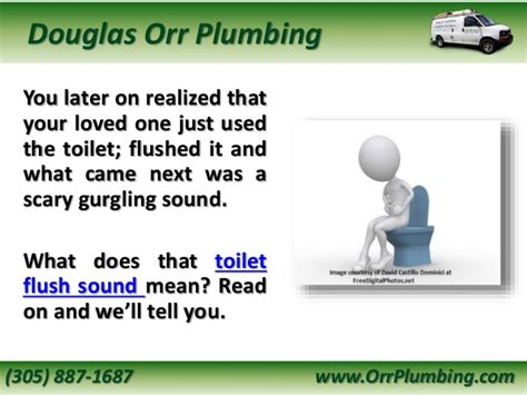 Plumbing Makes Noise When Flushing Toilet by What Does Your Toilet Flush Sound