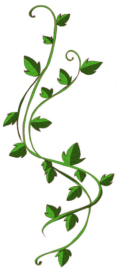 vine leaf tattoo designs 9 best poison vine tattoos images on leaf