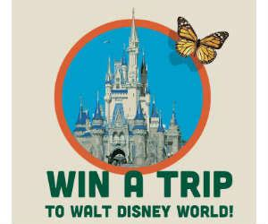 Win A Trip To Disney World Sweepstakes - win a trip to disney world in orlando fl free sweepstakes contests giveaways