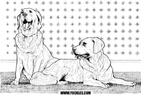golden retriever puppy coloring pages golden retriever coloring page by yuckles