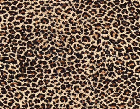 leopard pattern tumblr leopard skin as background stock photo colourbox