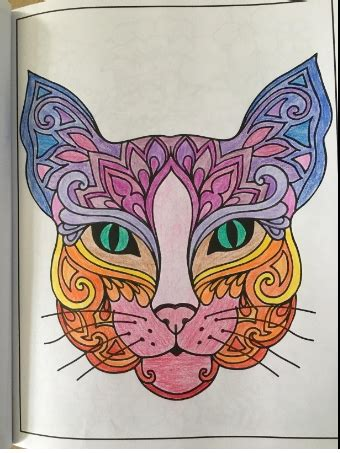The Colorful Antistress Coloring Book colorful cats stress relieving cat coloring book