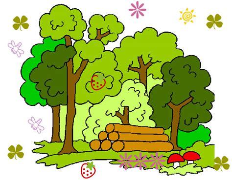 imagenes para dibujar naturaleza dibujo de bosque 2 pintado por julietk en dibujos net el