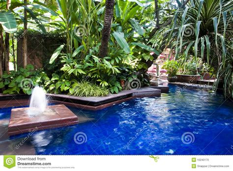 Small Homes Decor by Tropical Swimming Pool Stock Photo Image 10240170