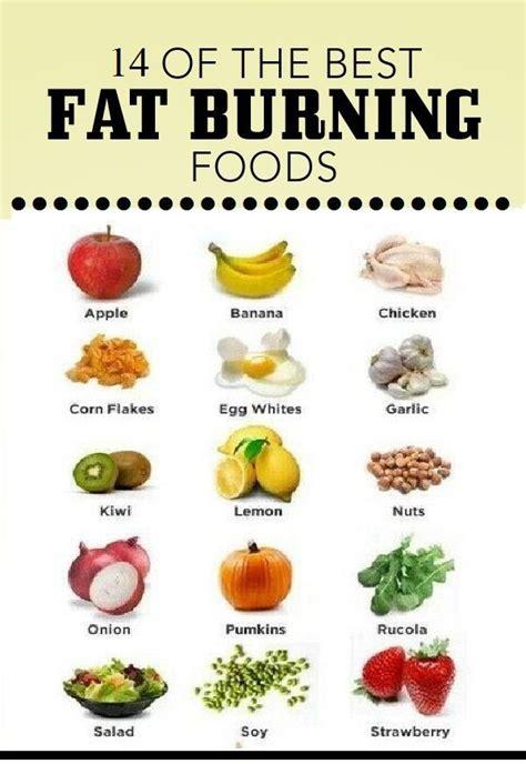 list of healthy fats pdf burning foods list pdf foodfash co