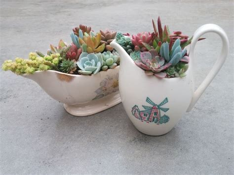 unique planters for succulents get creative with succulent planters old tea cups and