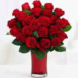 Dozen Red Roses One Dozen Long Stemmed Red Roses And Other Flowers Amp Plants At Proflowers Com