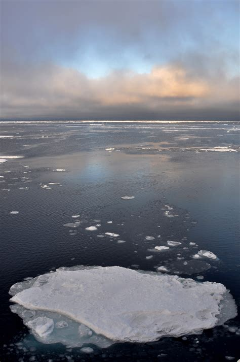arctic sea what is causing arctic sea decline national snow