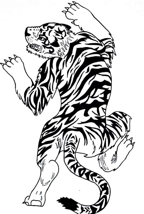 chinese tiger tattoo designs tiger designs www imgkid the image
