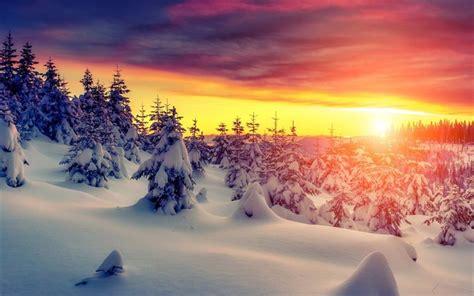 paesaggio invernale sfondi desktop wallpapers e pelautscom pictures scarica sfondi montagna neve tramonto albero inverno