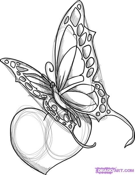 butterfly and heart tattoo designs flowers and butterflies with a designs how