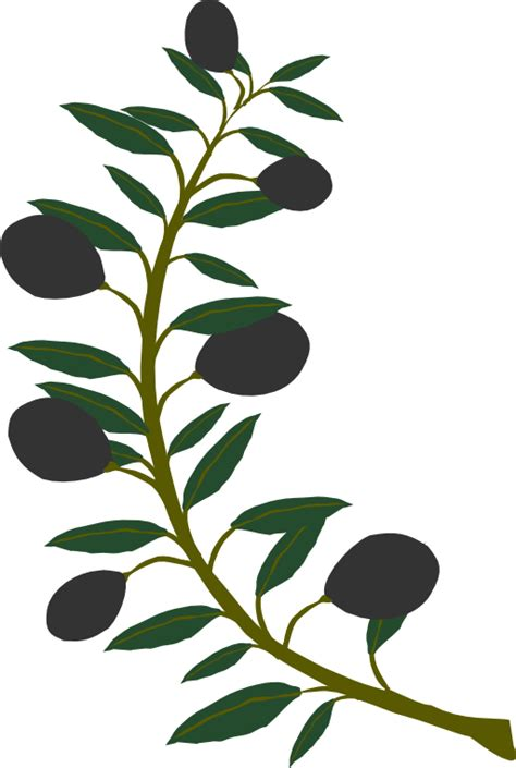 branches clip art cliparts co