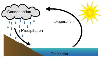 simple water cycle diagram the water cycle simple diagram www pixshark images
