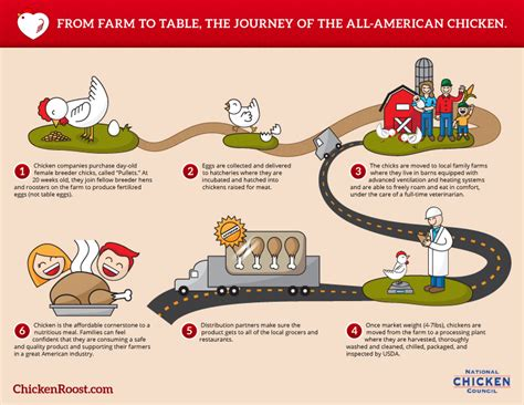 from farm to table the journey of the all american