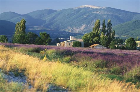 La Provence Frankreich by Why You Need To Visit Provence Images Of