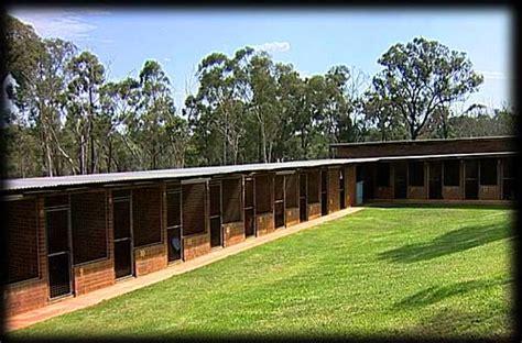 dog house boarding kennels dog boarding kennels