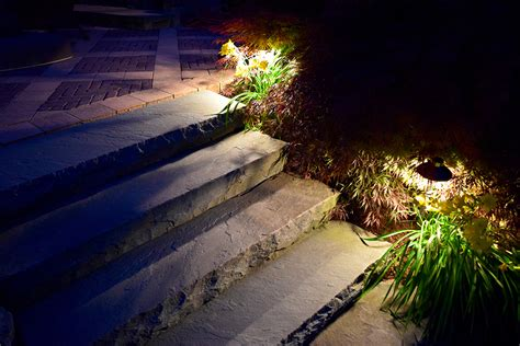 focus landscape lighting focus landscape lighting magic