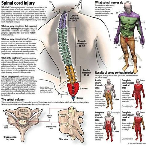 c5 from impact to recovery books 497 best images about spinal cord injury on
