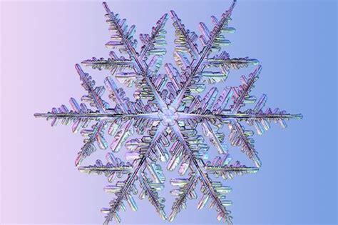 snowflake google images white freeze pinterest real snowflake google search snowflake pinterest