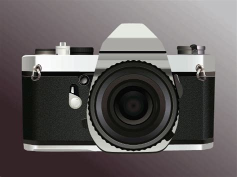 Birkhead Wants Cameras To Show Hes A Top Pop by These Animated Gifs Show The Evolution Of Cameras Through
