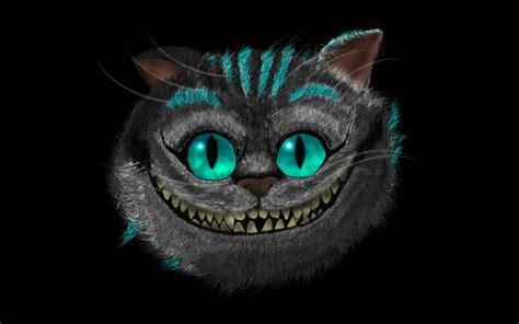 cheshire cat cheshire cat photo