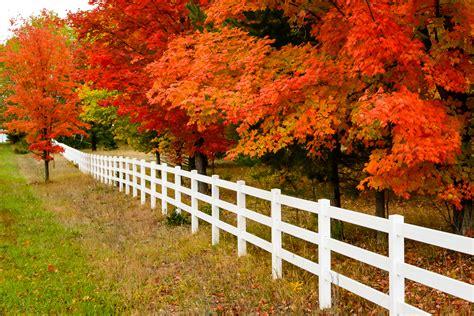 michigan fall colors steve q photo michigan fall color 2012 day 3 shanty creek