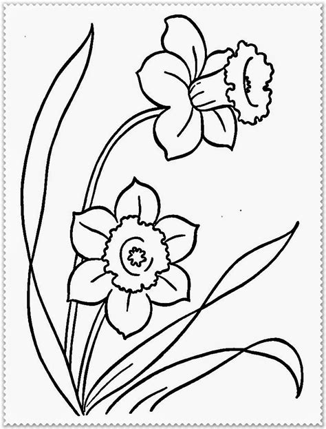 printable coloring pages of realistic flowers free realistic flowers coloring pages