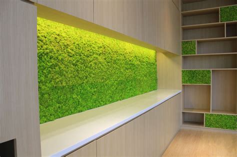 Interior Wall Panels Nz by Acoustic Moss Panels Outside In