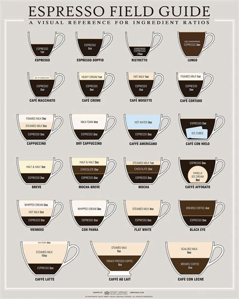 how to make designs on coffee food infographics best coffee infographic designs on the web