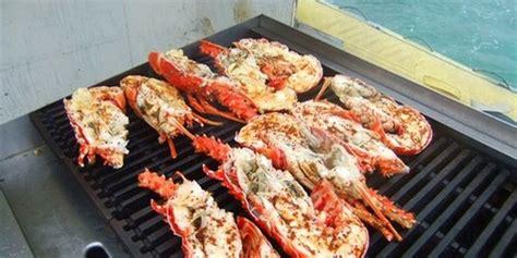 catamaran cruise and lobster lunch antigua tropical adventures antigua 187 mystic lobster lunch cruise