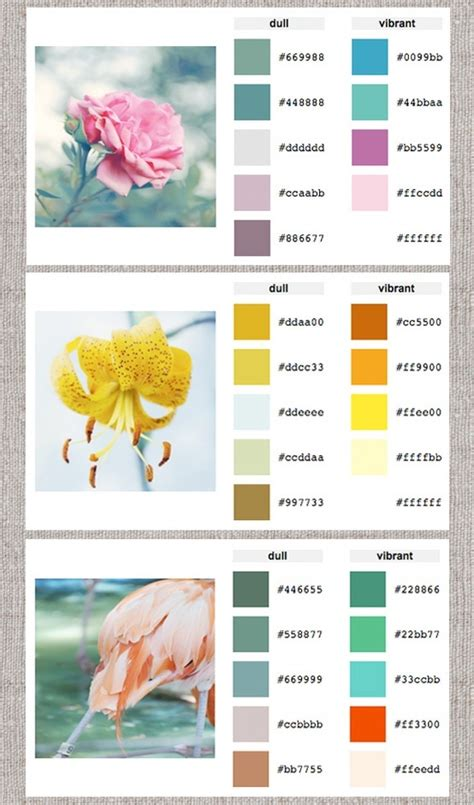 online color palette maker color palette generator design it pinterest