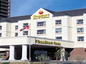 comfort inn calgary comfort inn suites south calgary calgary alberta