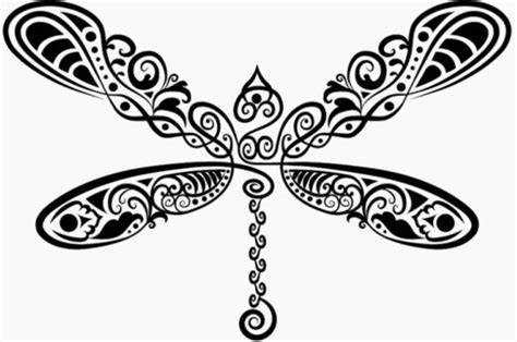 dragonfly free vector download 112 free vector for