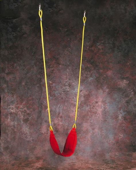 strap swing indoor therapist kit all special needs equipment