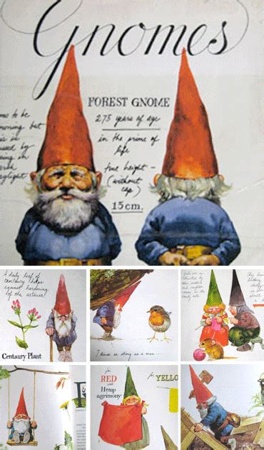 of gnomes books diy garden gnomes jaderbomb