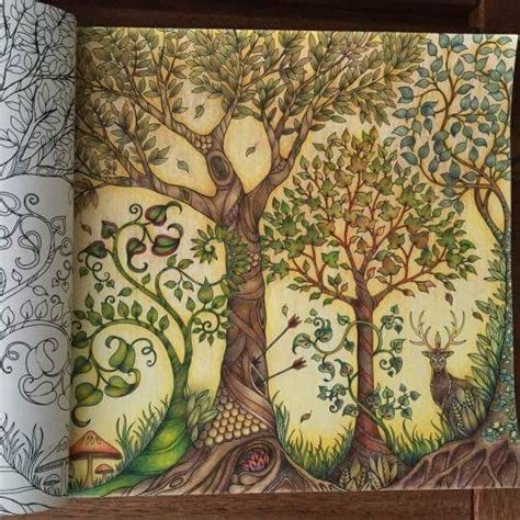 secret garden coloring book dk trees owl enchanted forest 193 rvores coruja floresta