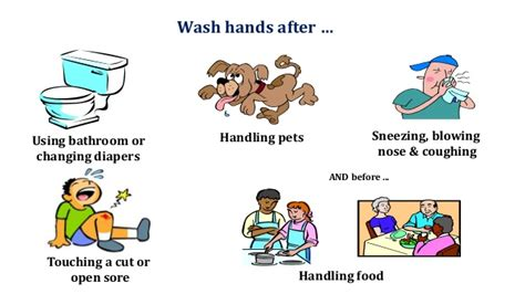 diseases from not washing hands after bathroom food borne disease it quot s prevention