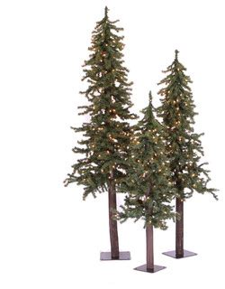 2 3 4 natural alpine tree set christmas trees by