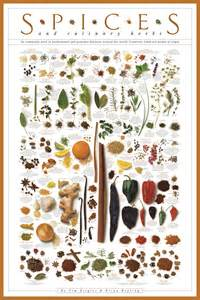 Free Kitchen Posters just have a look think of that as a poster to adorn your kitchen
