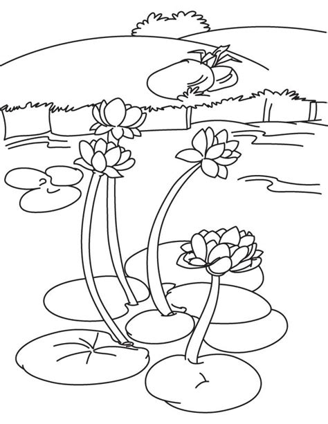 Free Coloring Pages Of Lily Pad In A Lake Lake Coloring Page