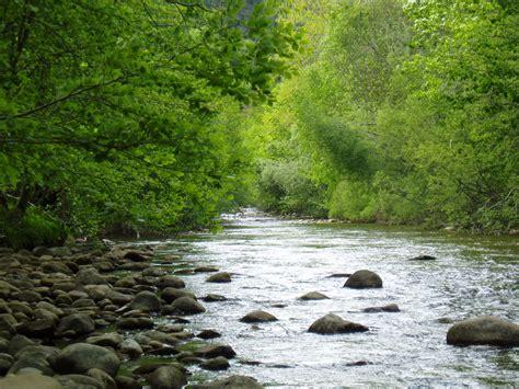 el rio de la 8401378915 r 237 o trueba burgos fundaci 243 n naturaleza y hombre