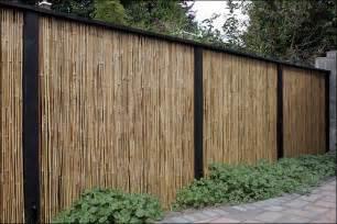 Backyard Bamboo Fencing Bamboo Grove Photo Bamboo Fence
