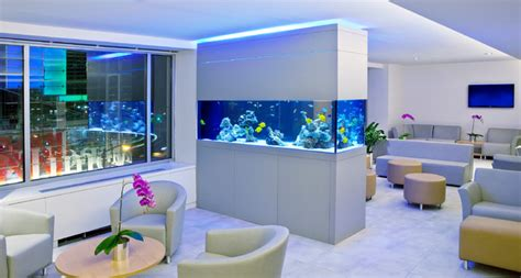 extraordinary home aquarium ideas for your home making your home environment better with help from an