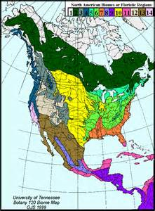 america forest map here are predictable tree communities that define a