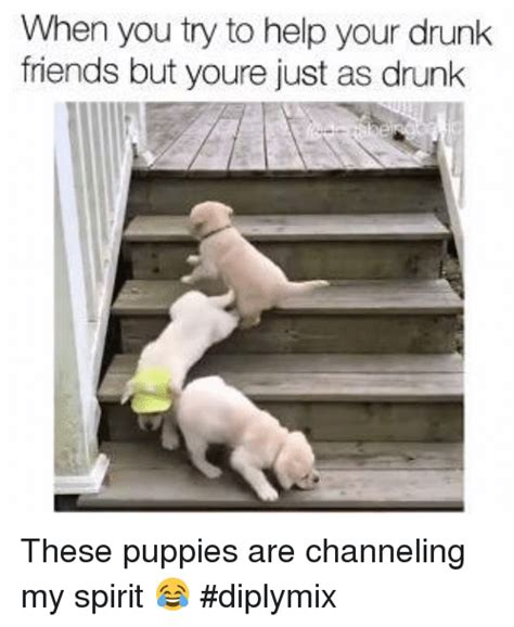 Drunk Friend Memes - search channeling memes on sizzle